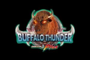 Buffalo Thunder review